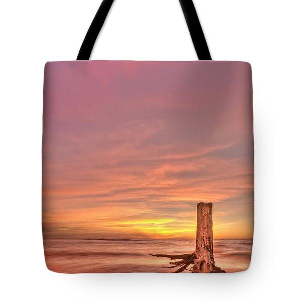 All Aglow Tote Bag by Evelina Kremsdorf