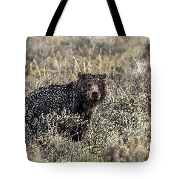 Tote Bag featuring the photograph All Alone by Yeates Photography