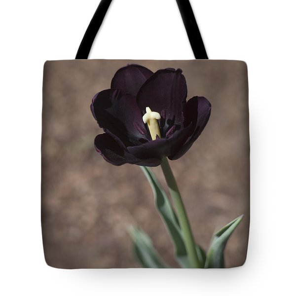 All Darkness And Light Tote Bag