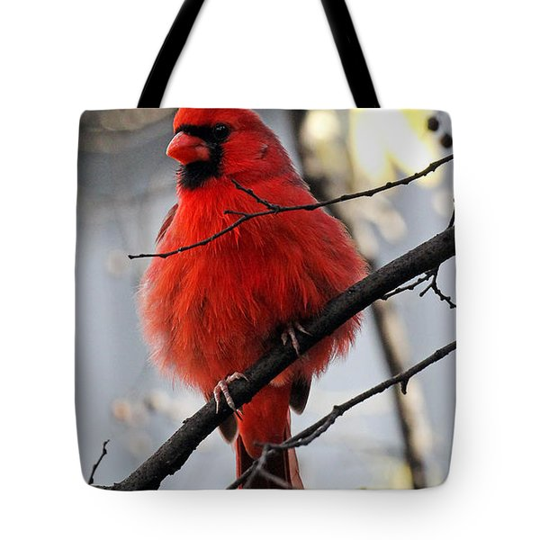 All Fluff Tote Bag