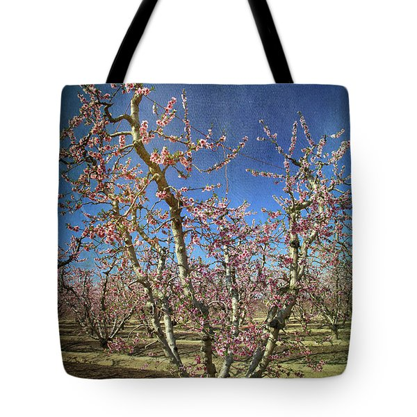 All Good Things Tote Bag by Laurie Search