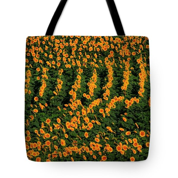 Tote Bag featuring the photograph All In A Row by Chris Berry