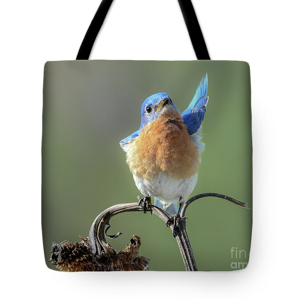 All In Favor Tote Bag by Amy Porter