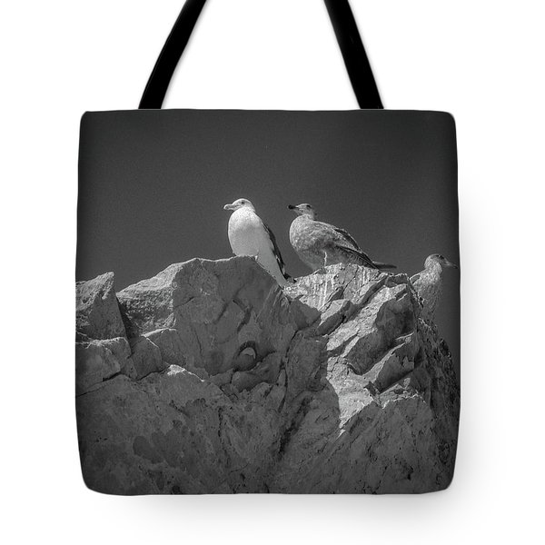 Tote Bag featuring the photograph All Quiet On The Western Front by Samuel M Purvis III