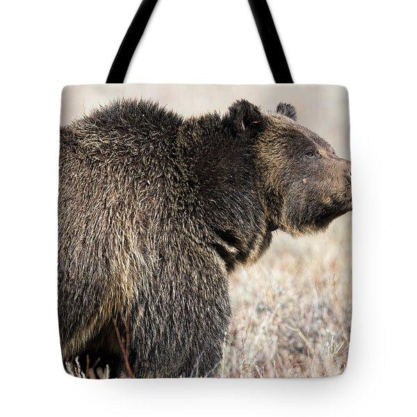 All Seems Beautiful Tote Bag