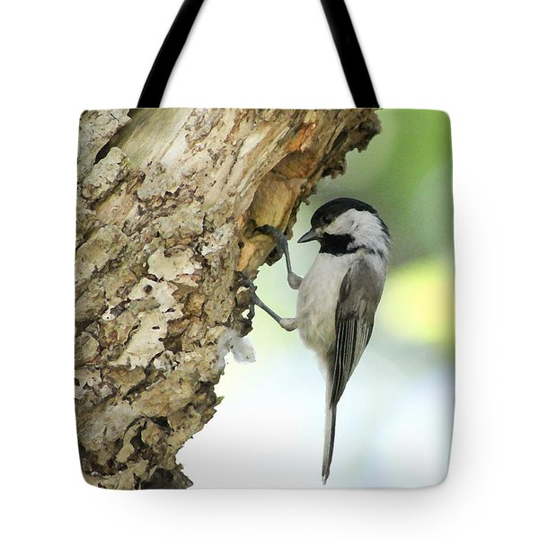 Tote Bag featuring the photograph All Textured Up by Anita Oakley