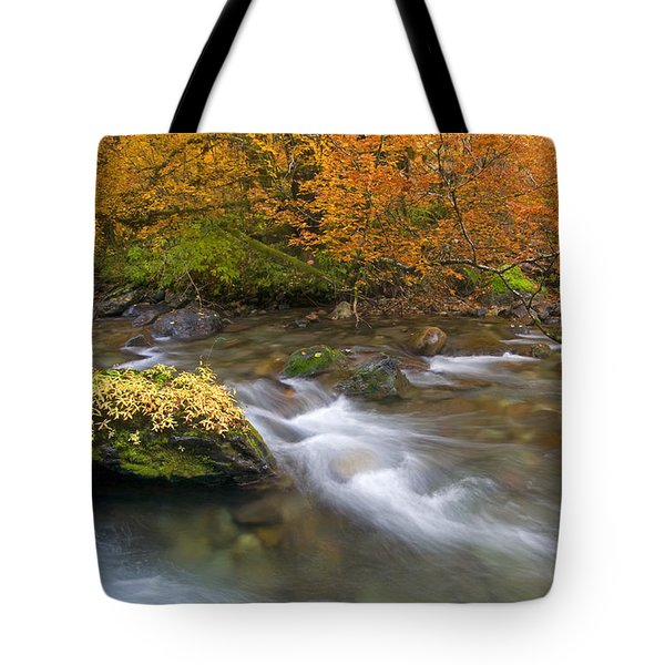 All That Is Gold Tote Bag by Mike  Dawson