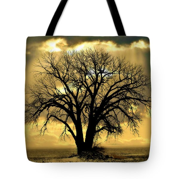 All That Remains  Tote Bag by Julie Hamilton