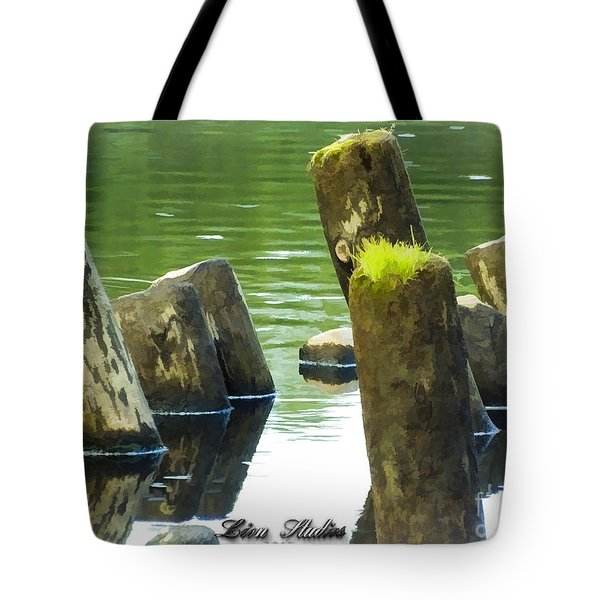 All That Remains Tote Bag by Melissa Messick