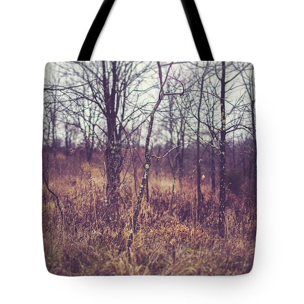 Tote Bag featuring the photograph All The While by Shane Holsclaw