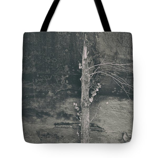All Things Shall Pass Tote Bag