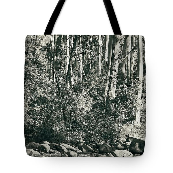 Tote Bag featuring the photograph All Was Tranquil by Linda Lees