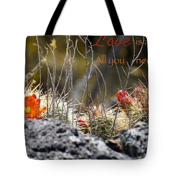 All We Need Tote Bag by David Norman