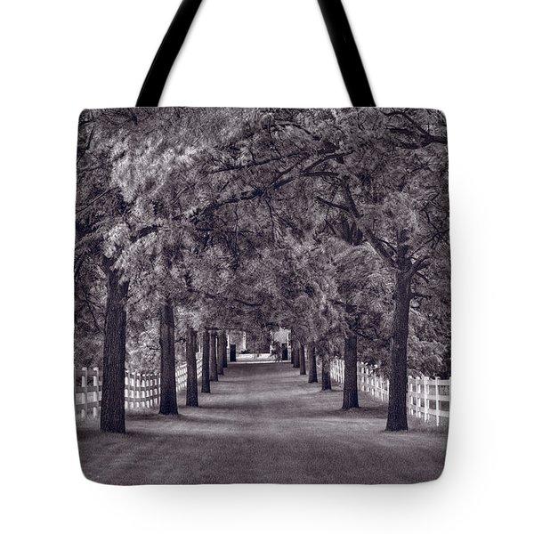 Allee Way Bw Tote Bag by Steve Gadomski