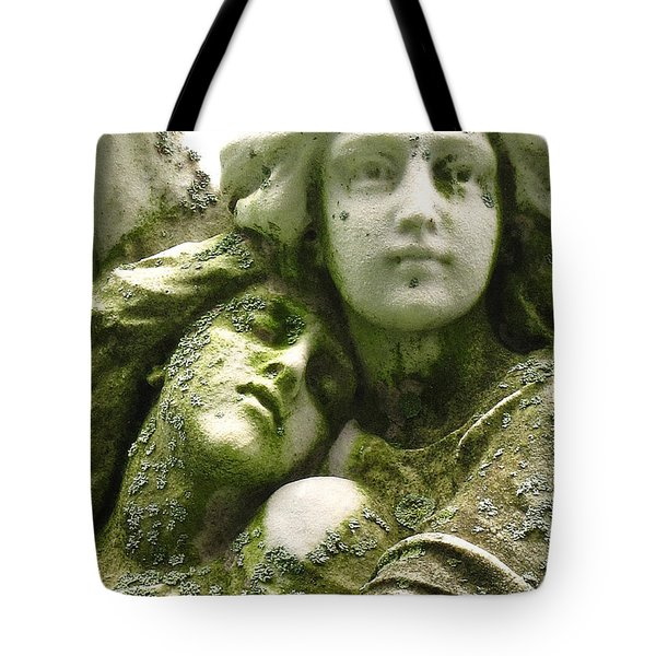 Allegorical Theory Tote Bag