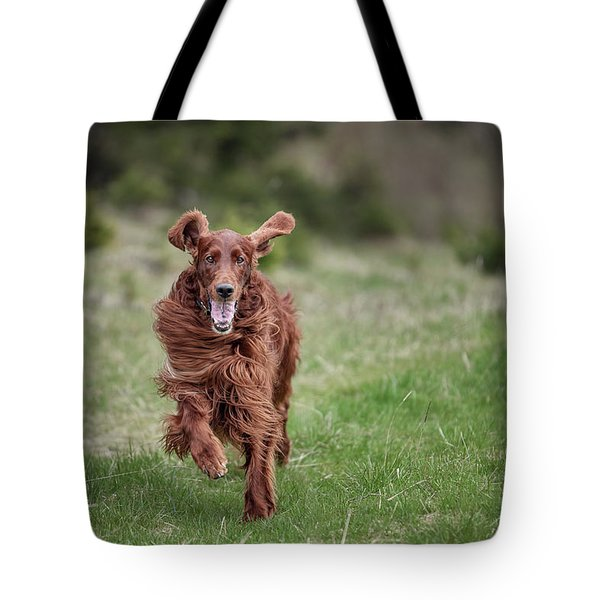 Allegro's March Tote Bag