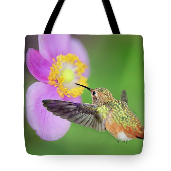 Allens Hummingbird And Anemone Tote Bag