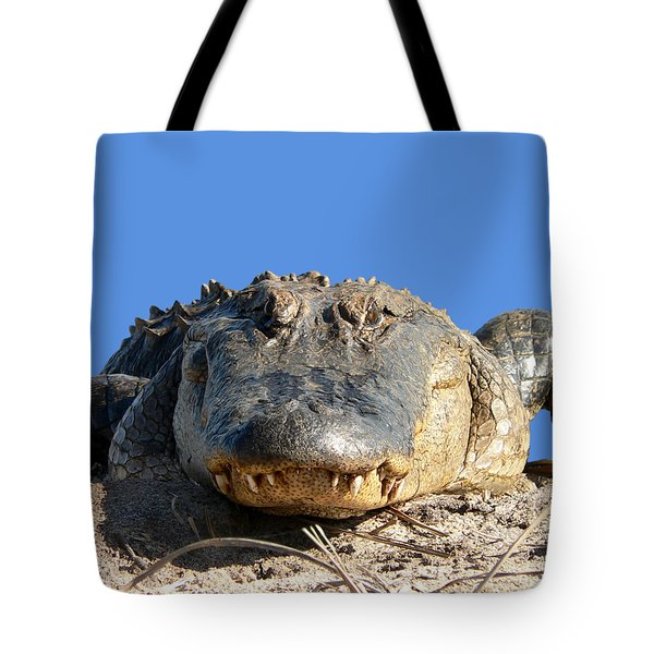 Tote Bag featuring the photograph Alligator Approach .png by Al Powell Photography USA