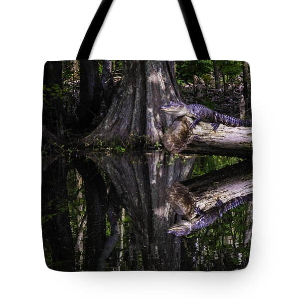 Alligators The Hunt, New Orleans, Louisiana Tote Bag