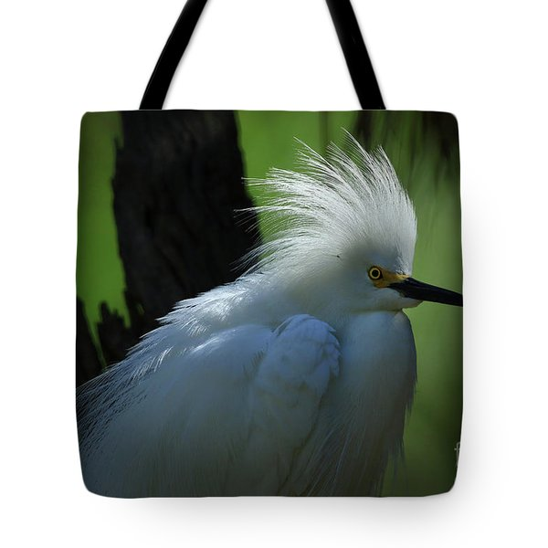 Tote Bag featuring the photograph Alligator Farm Snowy Egret by Deborah Benoit