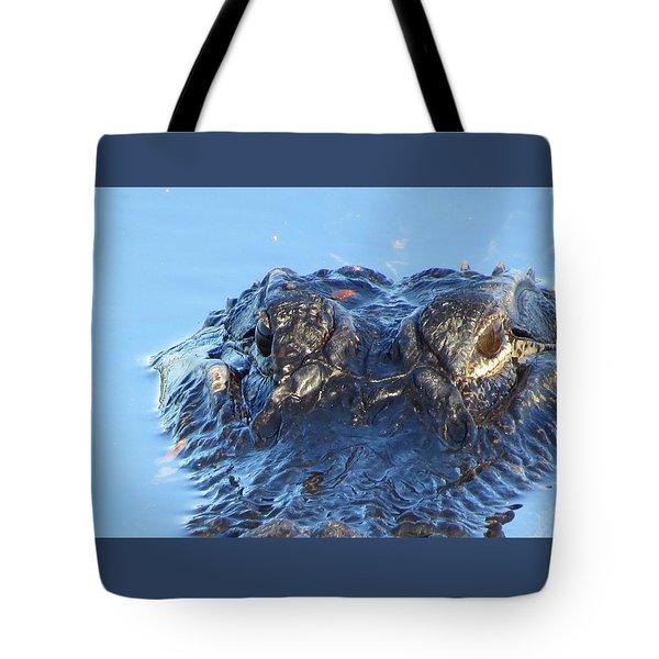 Tote Bag featuring the photograph Alligator Head Closeup by Melinda Saminski