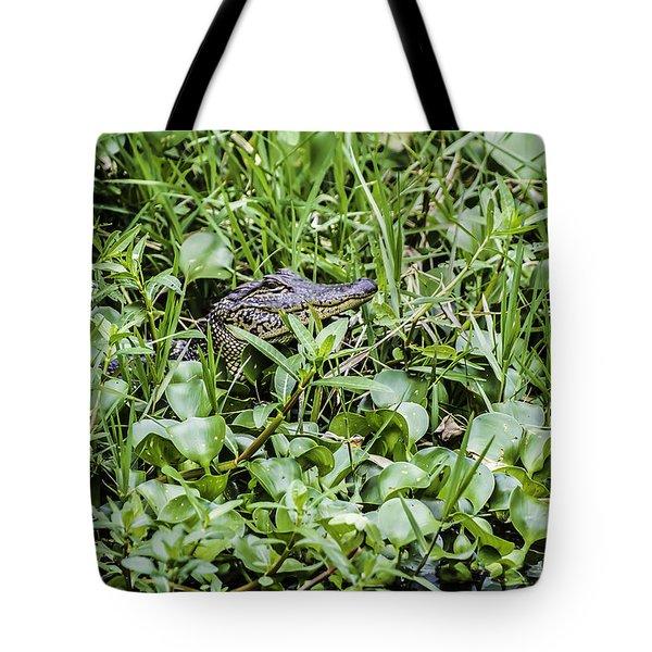 Alligator In Duck Weed, Louisiana Tote Bag