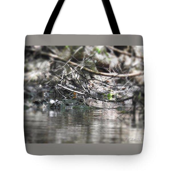 Alligator In Silver Tote Bag