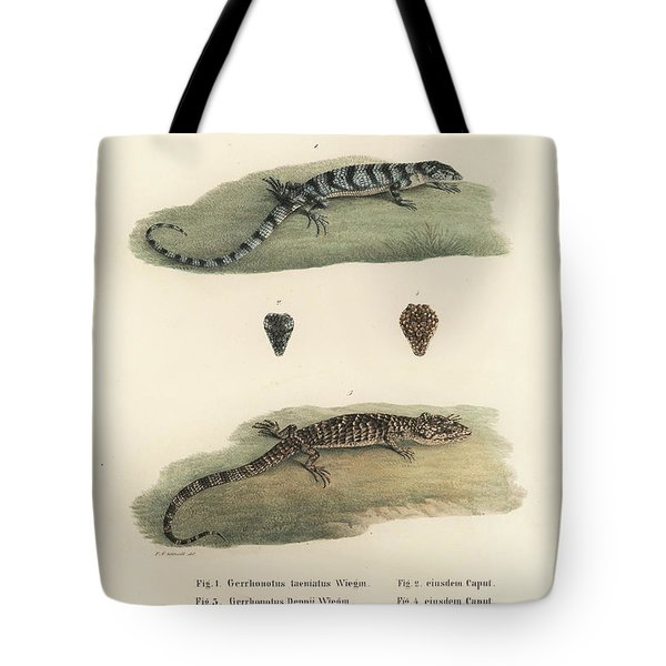 Alligator Lizards Tote Bag