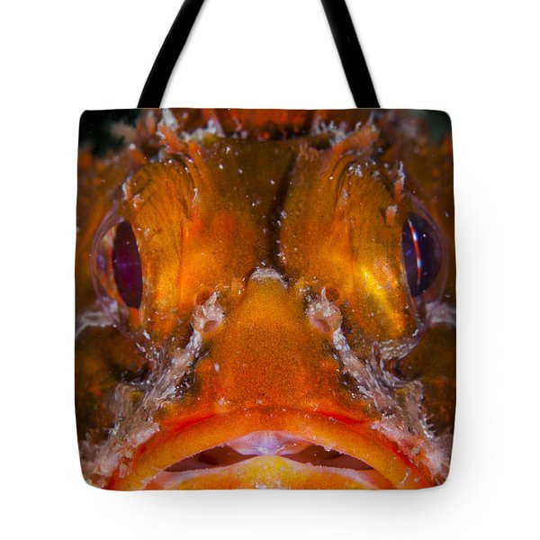 Allow Me To Introduce Myself Tote Bag