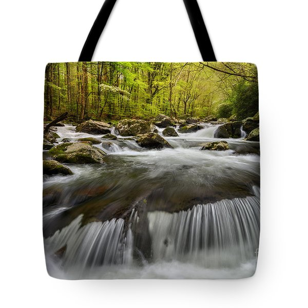 Allure Tote Bag by Anthony Heflin