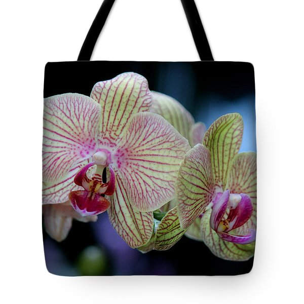 Tote Bag featuring the photograph Almightily by Silke Brubaker