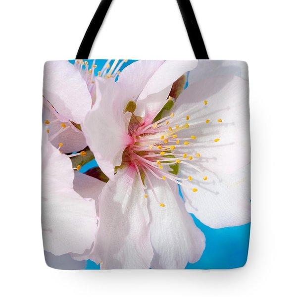 Almond Tree Blossoms Tote Bag