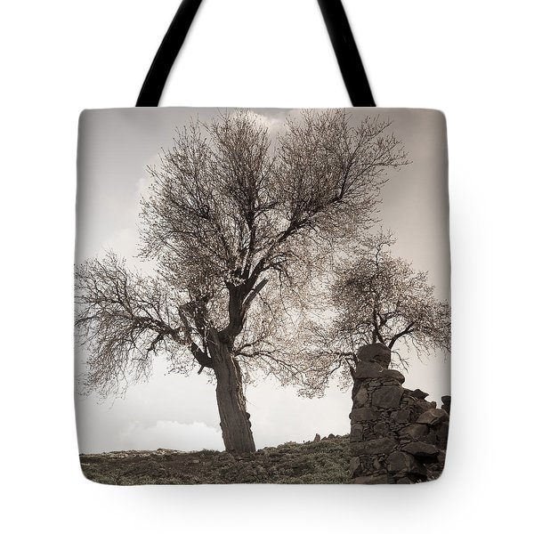 Almond Trees In Abandoned Village Again Tote Bag