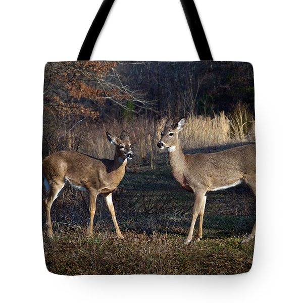 Almost Spring Tote Bag by Bill Stephens