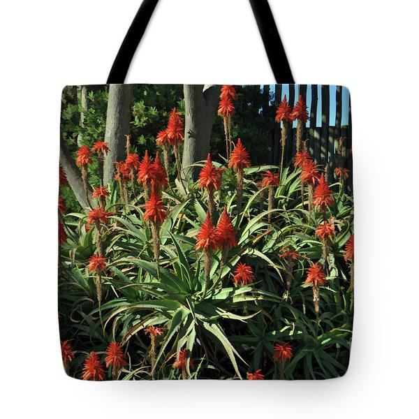 Aloe Choir Tote Bag