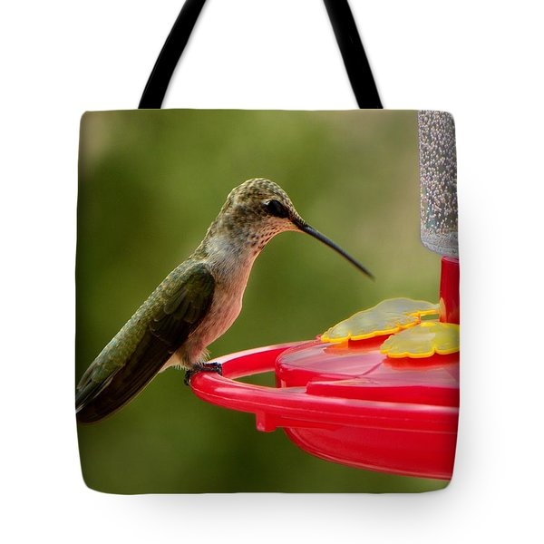 Tote Bag featuring the photograph Alone At Last by Joseph Frank Baraba