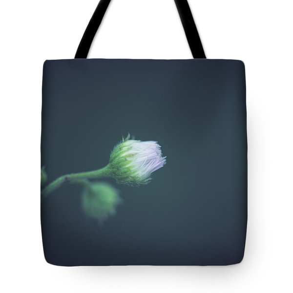 Tote Bag featuring the photograph Alone In Dreams by Shane Holsclaw