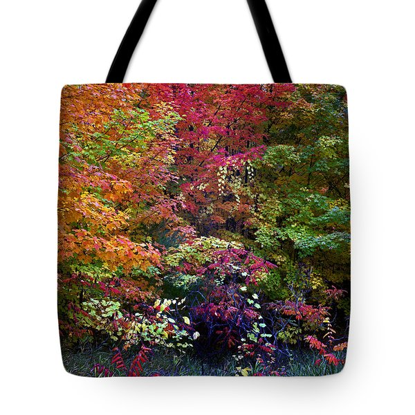 Along M37 In Autumn 2014 Tote Bag