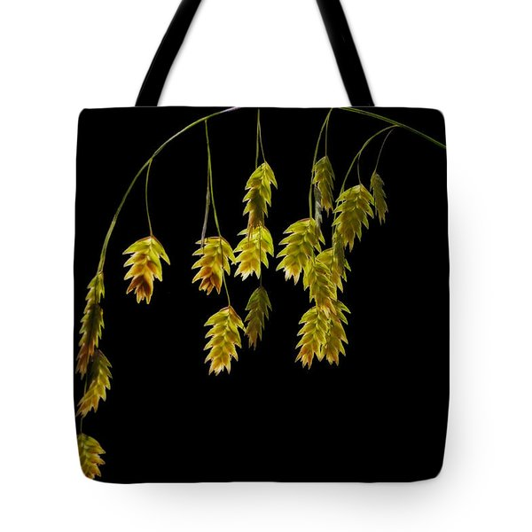 Along The Curve Tote Bag