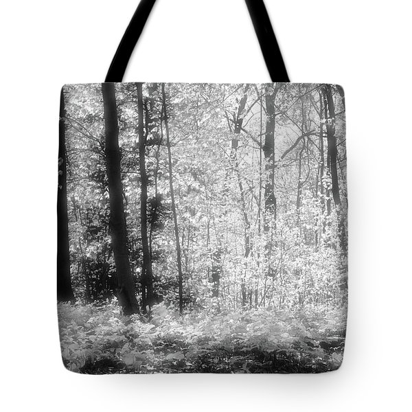 Along The Top Bw  Tote Bag by Lyle Crump