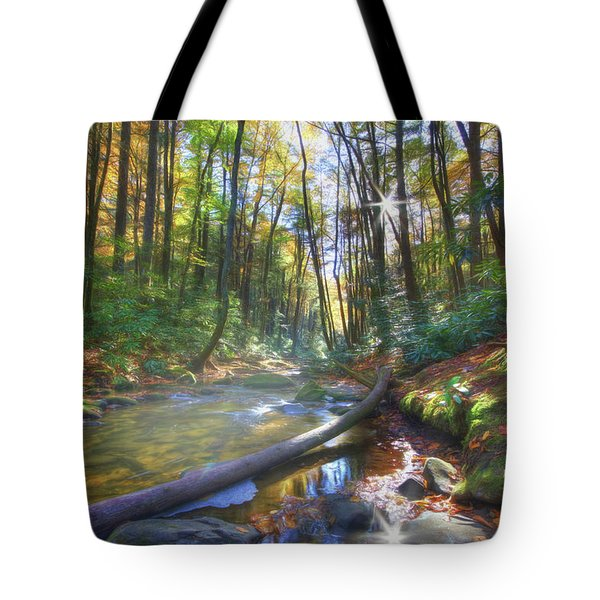 Along The Trail In Georgia Tote Bag by Sharon Batdorf