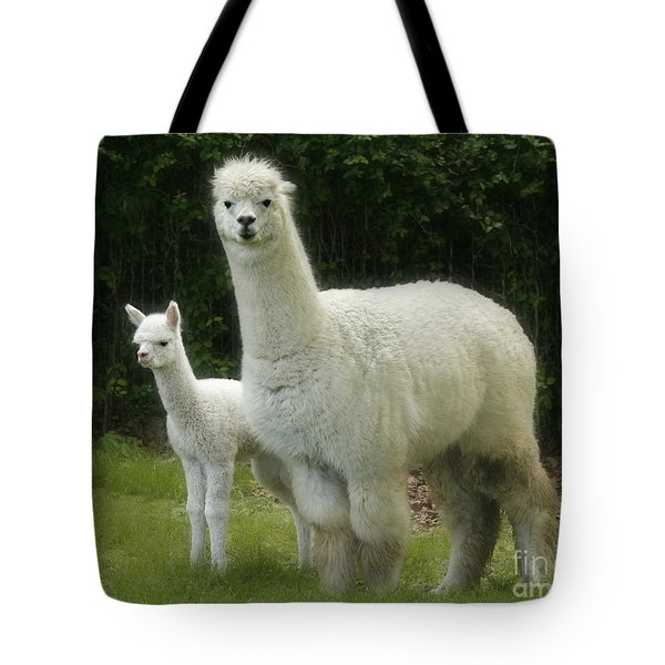 Alpaca And Foal Tote Bag