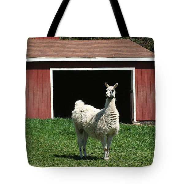 Tote Bag featuring the photograph Alpaca And Red Shed by William Selander