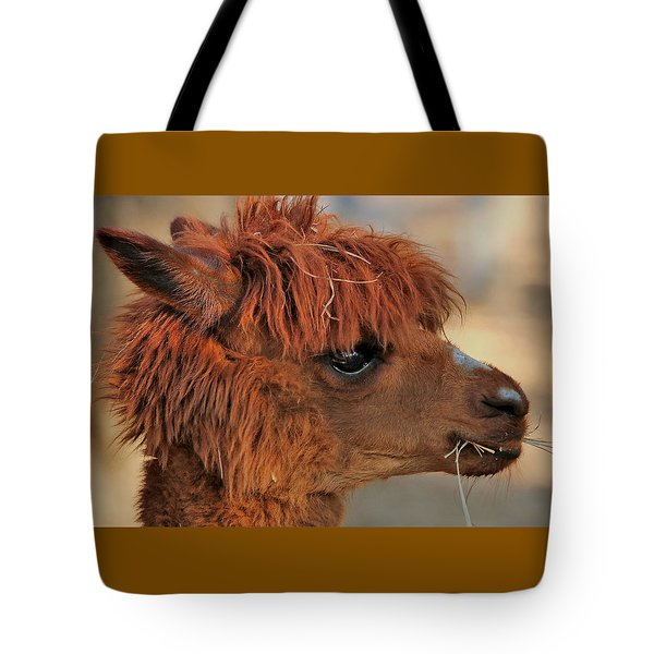 Alpaca Portrait Tote Bag by Sheila Brown