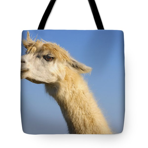 Tote Bag featuring the photograph Alpaca by Skip Hunt