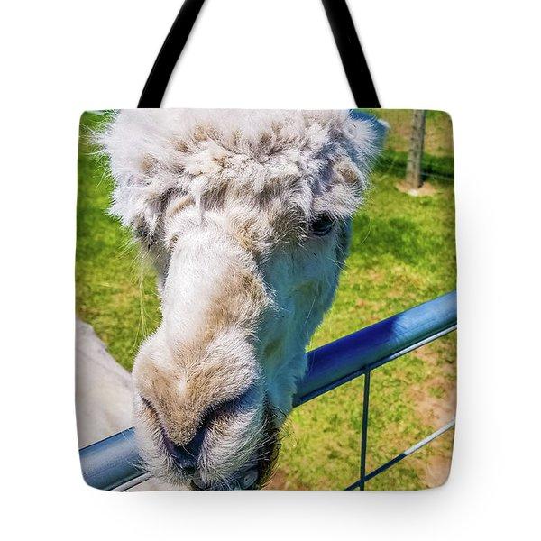 Alpaca Yeah Tote Bag