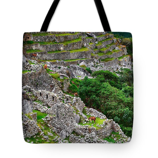 Alpacas At Machu Picchu Tote Bag