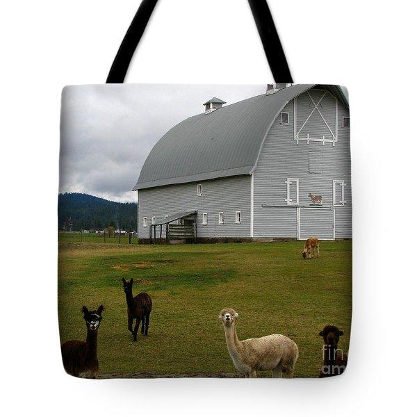 Alpacas Tote Bag by Greg Patzer