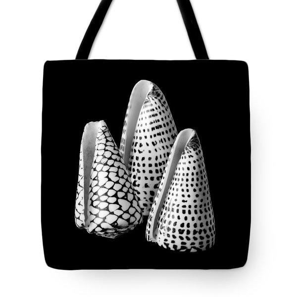 Alphabet Cone Shells Conus Spurius Tote Bag