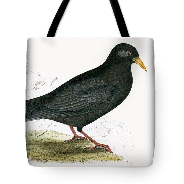 Alpine Chough Tote Bag by English School